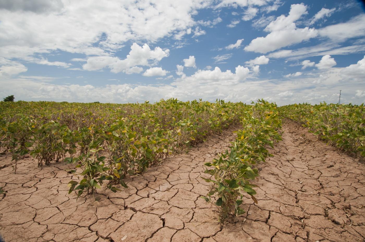 Η Ελλάδα δεν φροντίζει για το κλίμα της