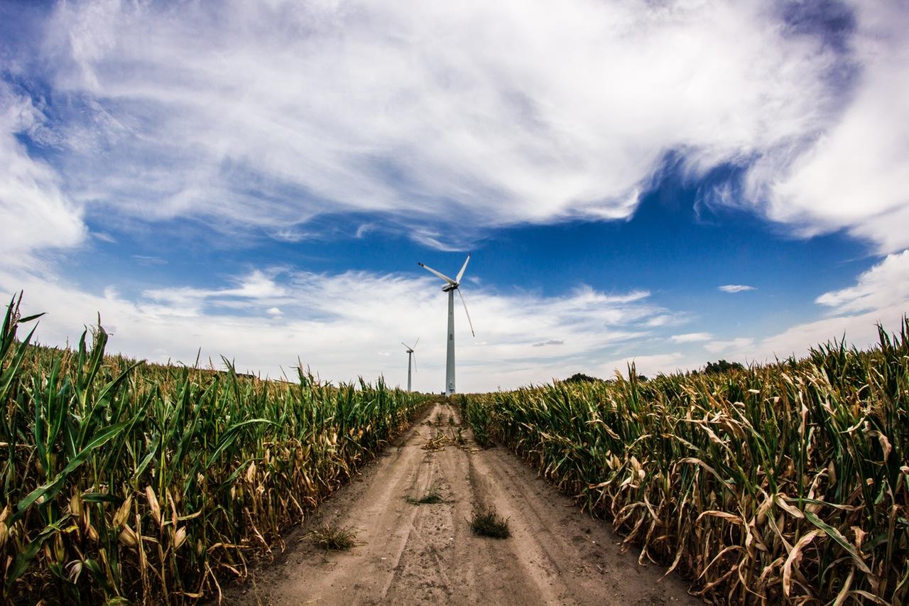 Τρία εκατ. τόνοι βιομάζας παραμένουν κάθε χρόνο ενεργειακά αναξιοποίητοι στην Ελλάδα